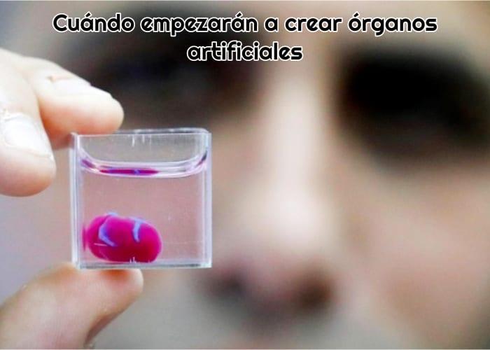 organo artificial sintetico